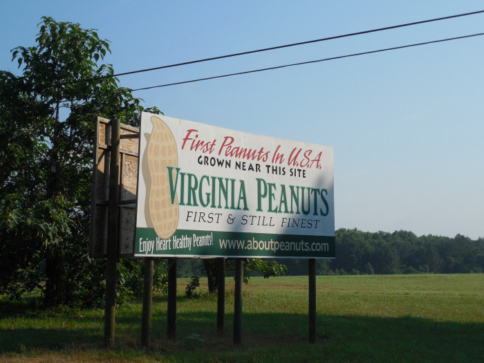 8. The first commercial crop of peanuts was grown in the mid 1800s.