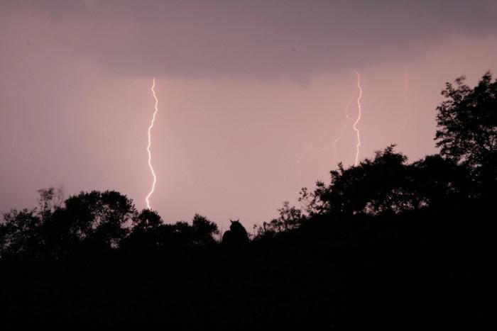 8) Double lightning!