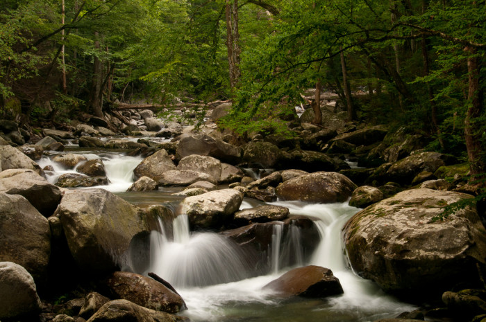6) Little Pigeon River will makes its babbling way into your dreams