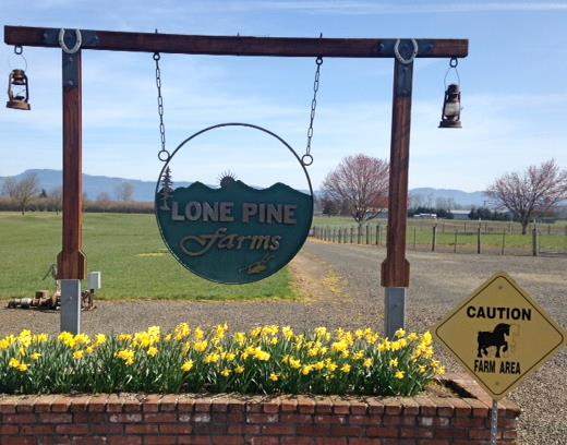 9) Lone Pine Farms, Junction City