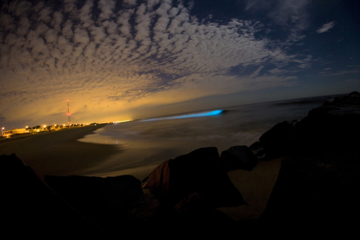 4. Bioluminescent Tide, Manasquan Beach