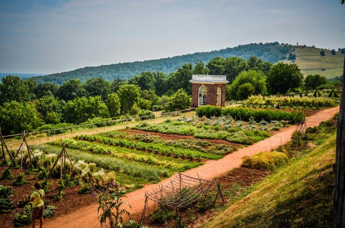 Monticello Vegetable Gardens