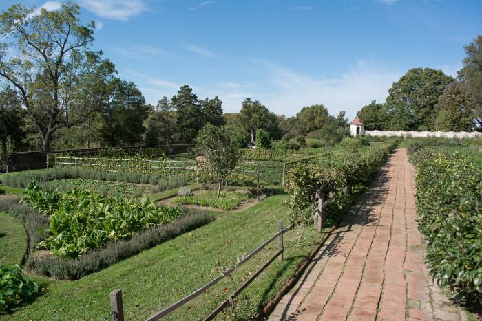 Mt Vernon Kitchen Garden