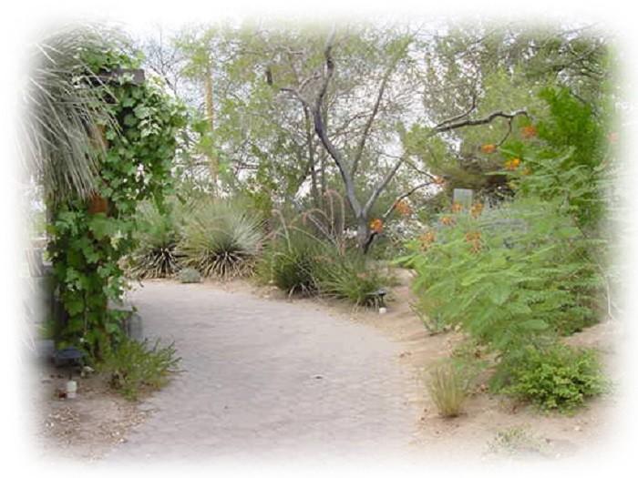 3. University of Nevada-Las Vegas Arboretum & Xeric Garden - Las Vegas, NV