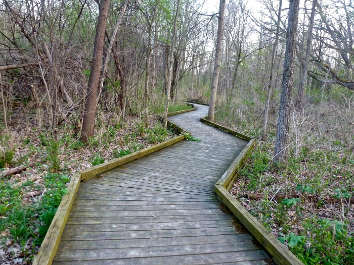 Grand Haven Campground >> 10 Trails In Michigan You Must Take If You Love The Outdoors