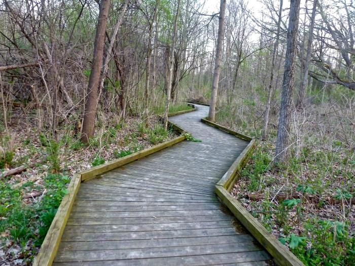 5) Parker Mill County Park, Ann Arbor