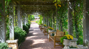 Here Are 10 Romantic Spots In Iowa To Take That Special Someone