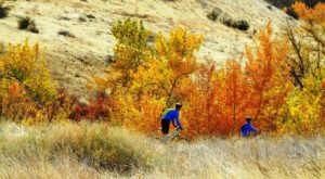 This Relaxing Trail System In Idaho Is The Perfect Urban Escape