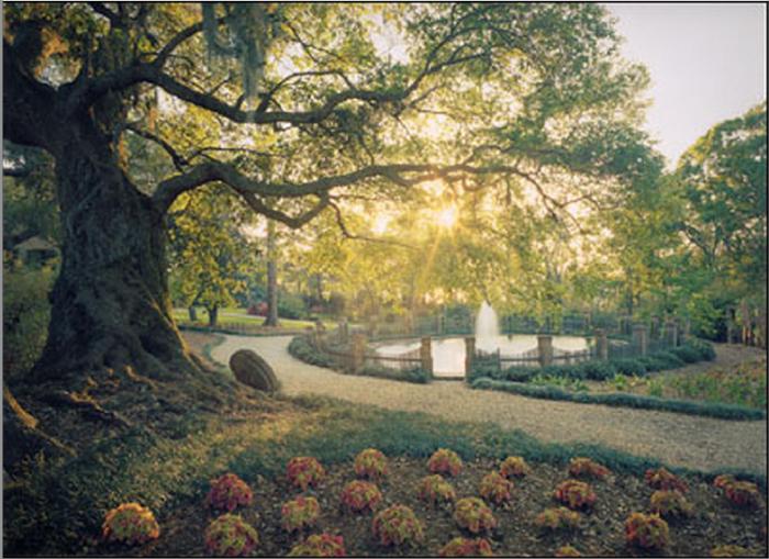 9) Rip Van Winkle Gardens, New Iberia