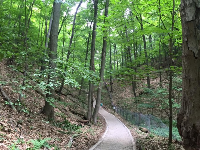 4) Rosy Mound Natural Area, Grand Haven