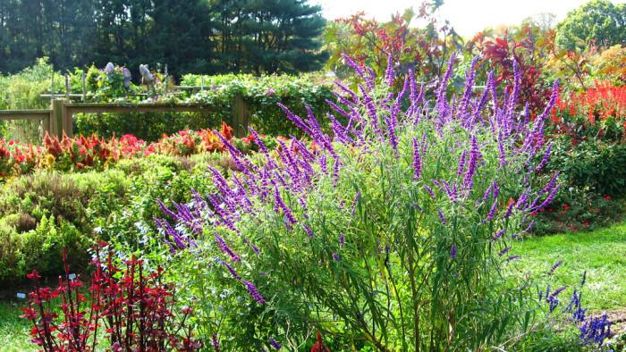7. Rutgers Garden, New Brunswick