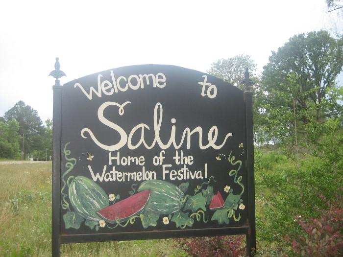 10) Saline