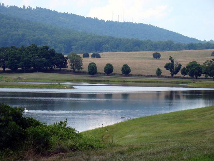 Scottsville River