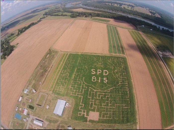 9) Dixie Maze Farms