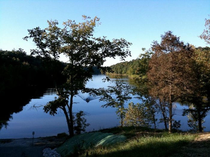 3. Shanty Hollow Lake