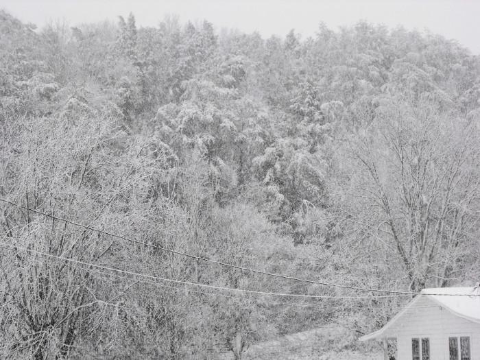 2) Drastic snowstorms
