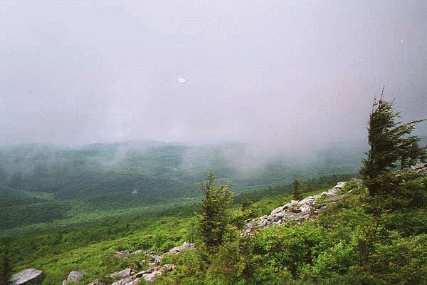 10. Allegheny Mountain Trail at Spruce Knob