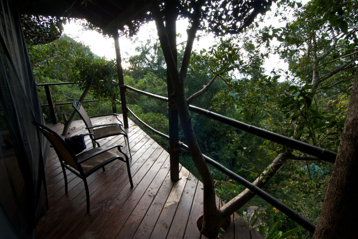 2) Temple Treehouse