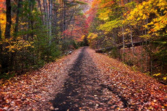 15. Abingdon, Damascus and The Virginia Creeper Trail