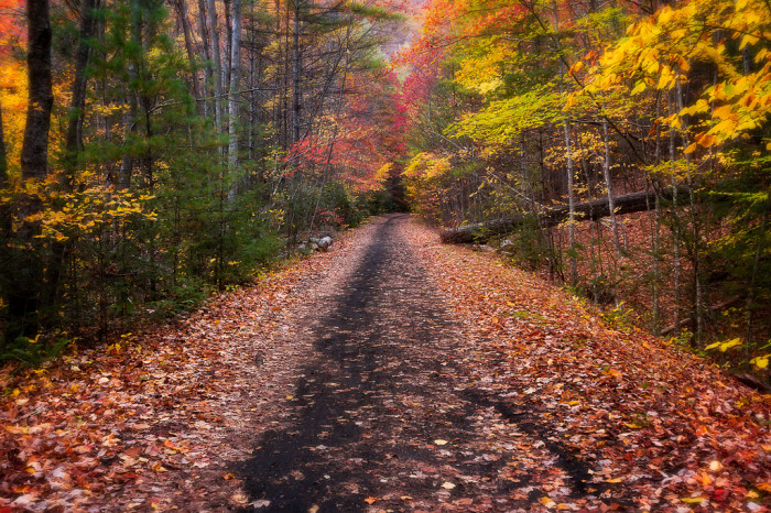 Virginia Creeper Trail in Fall
