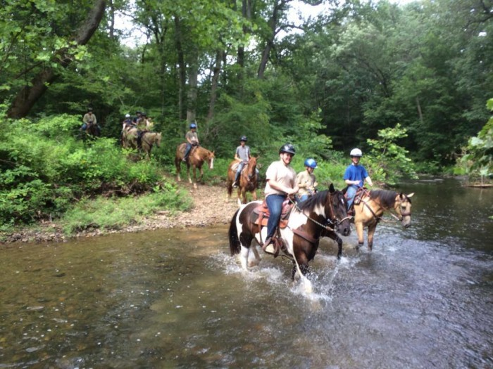 Wagon Wheel Ranch 2