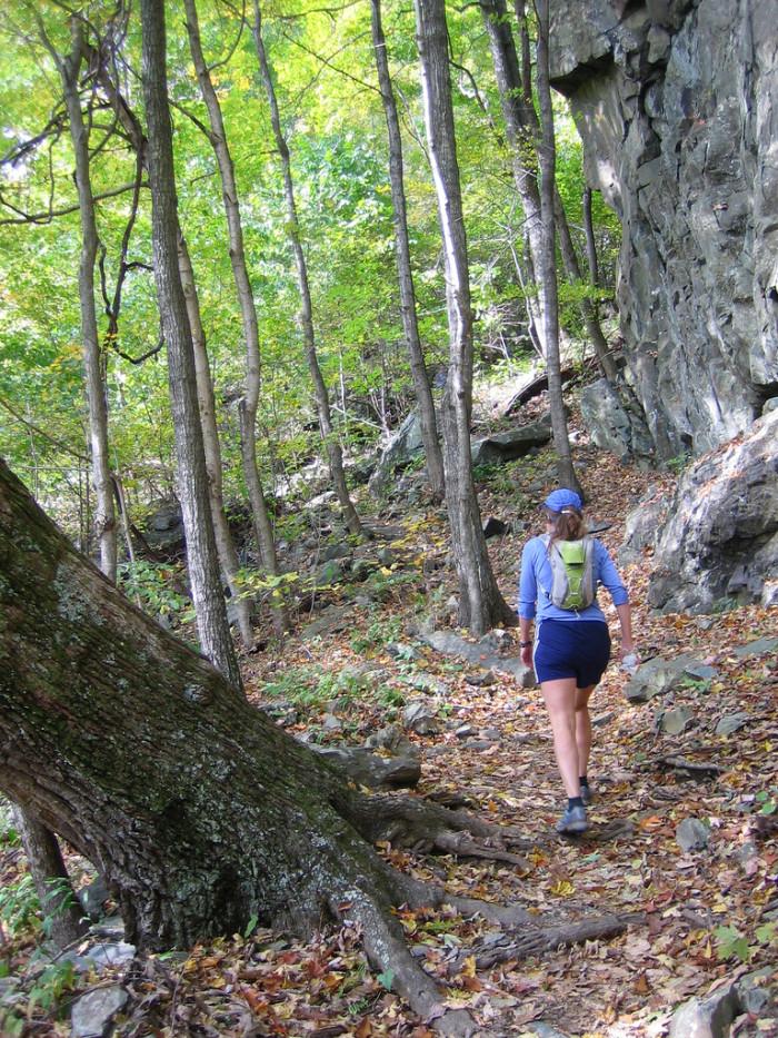 White Oak Canyon Trail