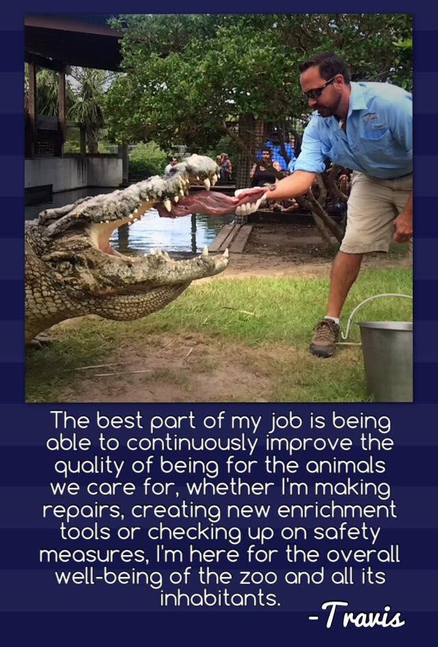 alligator adventure 1