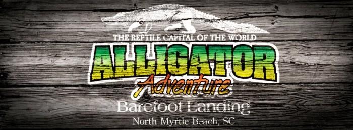 4. Alligator Adventures