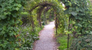 Here Are The 10 Most Beautiful Gardens You'll Ever See In Nebraska