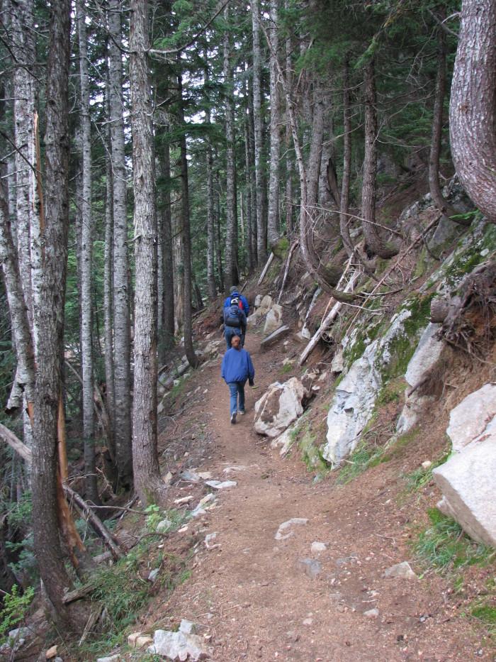7. Bandera Mountain Trail