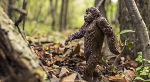 We Found Footage of a Dead Bigfoot in Nebraska – Watch if You Dare