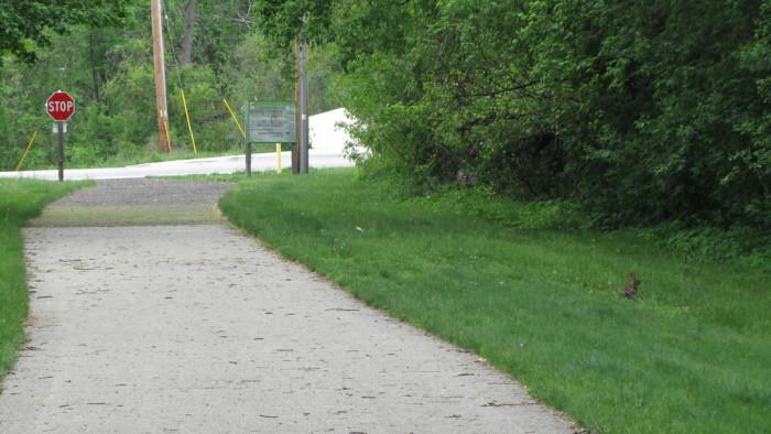 9)  The Butterworth Trail, Grand Rapids