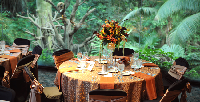 durham treetops restaurant 2