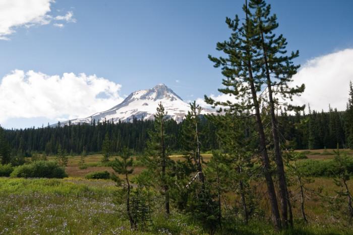 7) Elk Meadows, Mount Hood