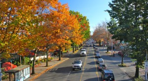 10 Undeniable Signs That Fall Is Almost Here in Washington