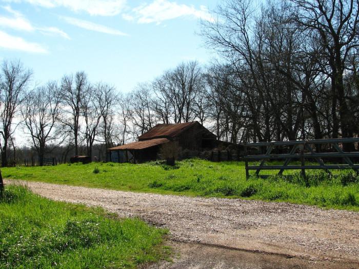6) Old farm road off Hwy 31.