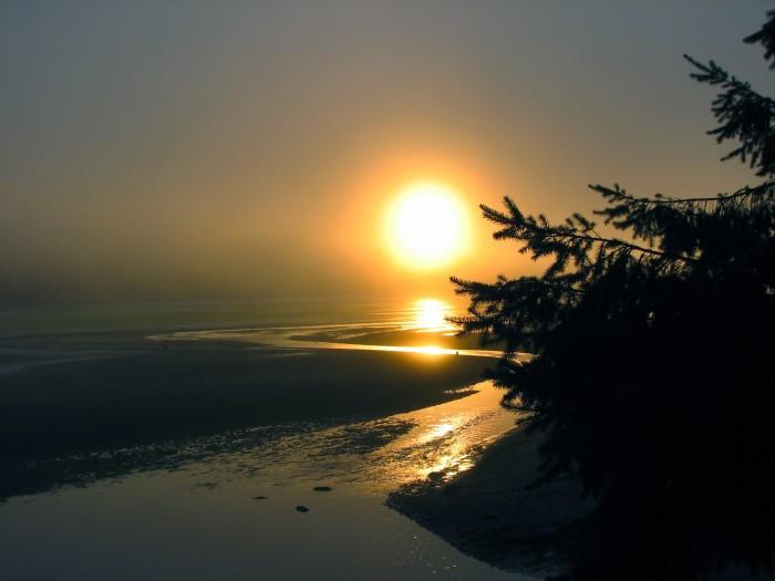11. An unforgettable foggy morning in Kingston.