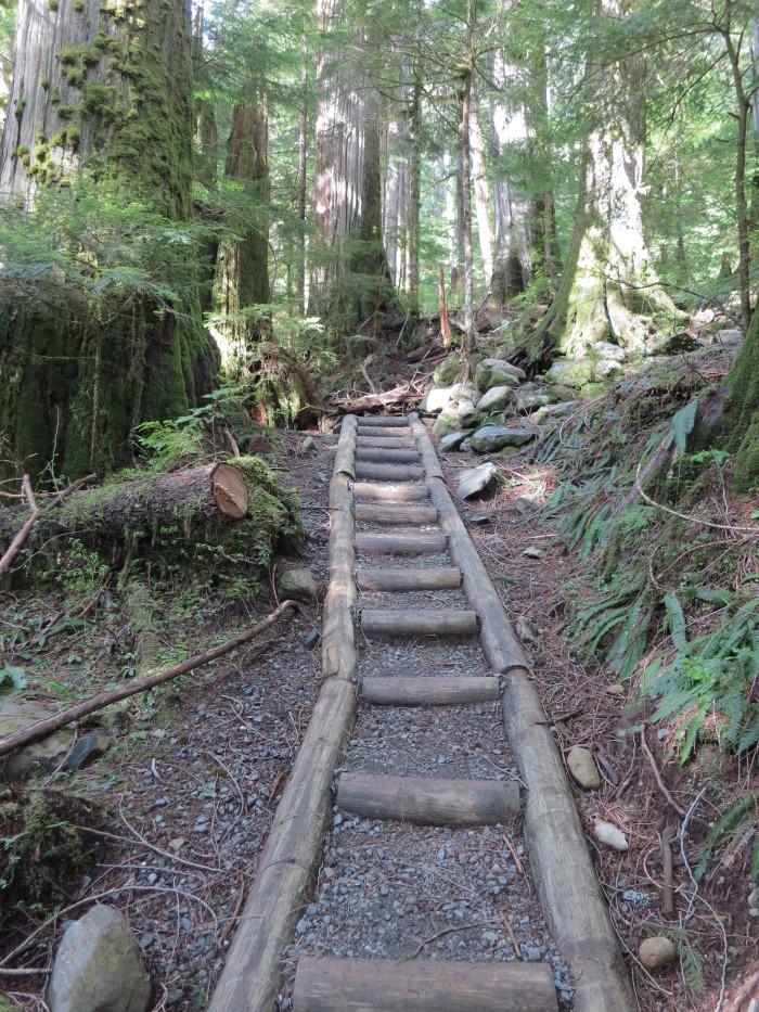 12. Lake Twenty-two Trail