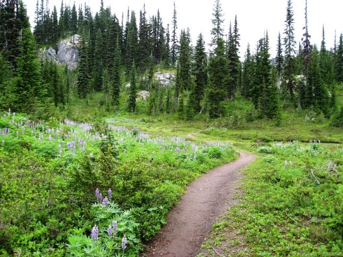 15. Lake Minotaur Trail