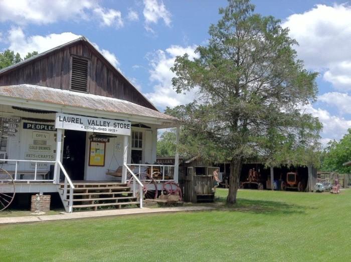 8) Laurel Valley Village Plantation – Ray