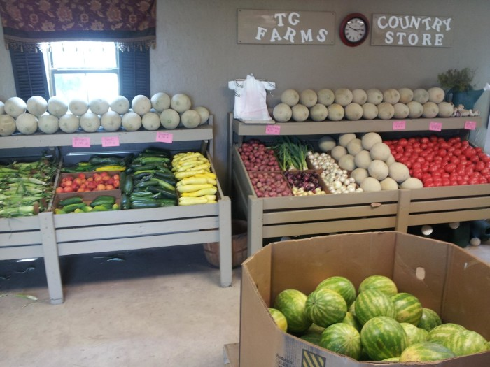 5. TG Farms Country Store: Norman & Newcastle