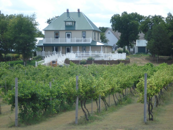 3. Indian Creek Village Winery: Ringwood