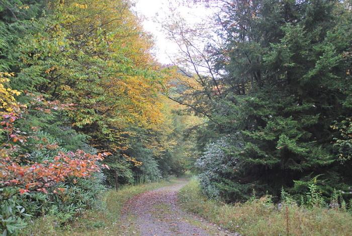 8. Otter Creek Trail