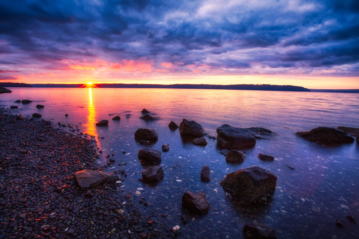 8. A vibrant photo taken at the Seal Rock Campground in the Olympic National Forest.