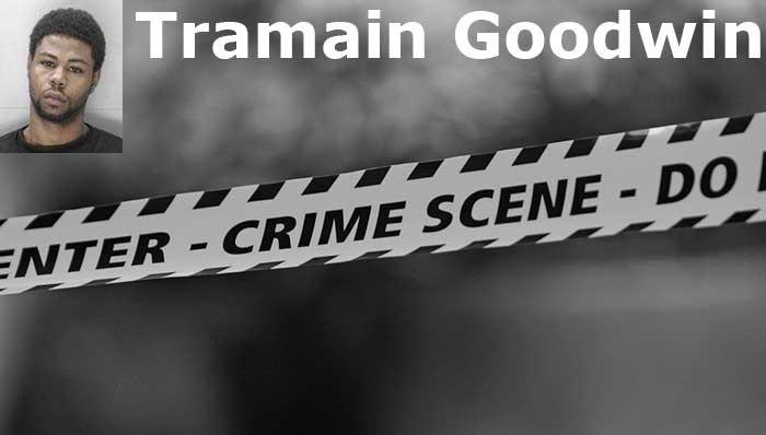 3. Tramain Goodwin