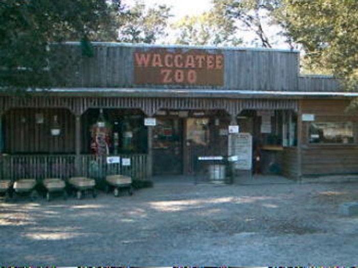 2. Waccatee Zoological Farm
