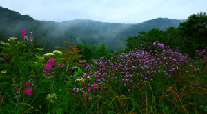 10 Surprising Things You May Not Expect When Moving To West Virginia