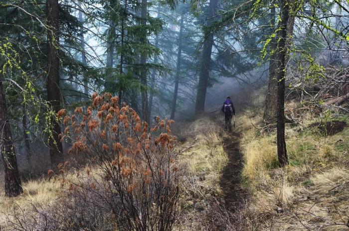 18. Westberg Trail