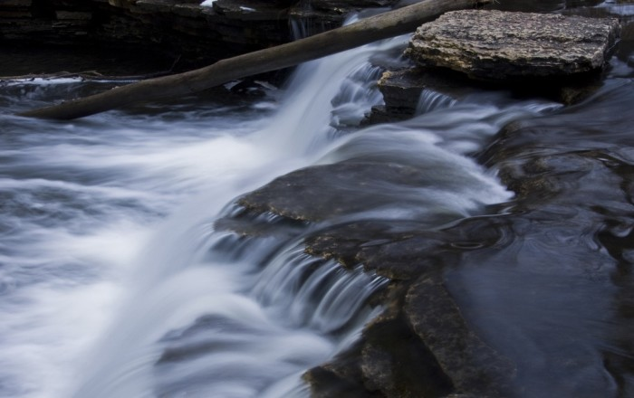 1. Waterfall Glen (Lemont)