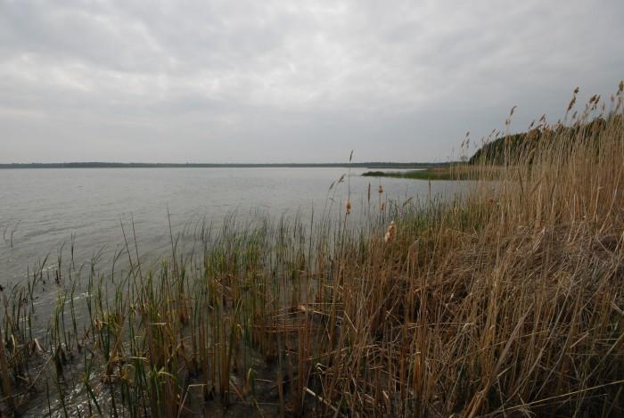 6. North Bay